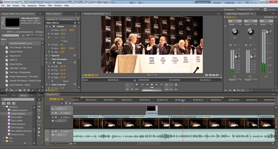 Our Standard Adobe Premiere Workspace